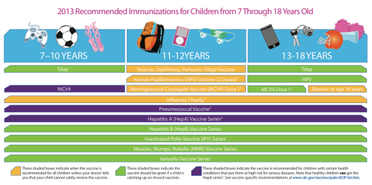 Immunization schedules age 7-18